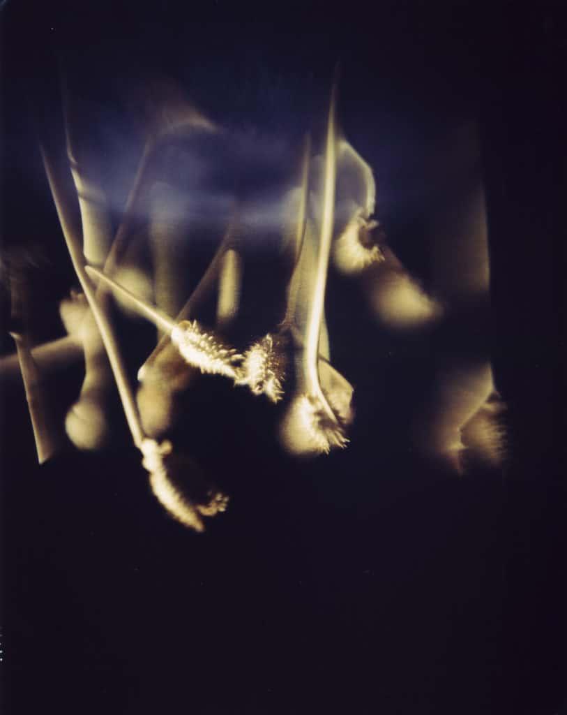 Ortographe. Tentativi di volo. 2007. foto di Cesare Fabbri