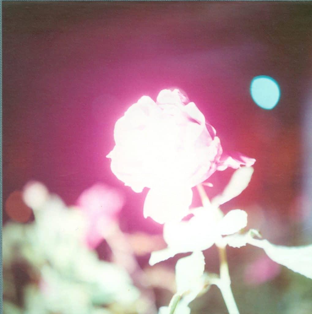 Rinko Kawauchi, <em>Illuminance</em>, 2011. Fotografia a colori.