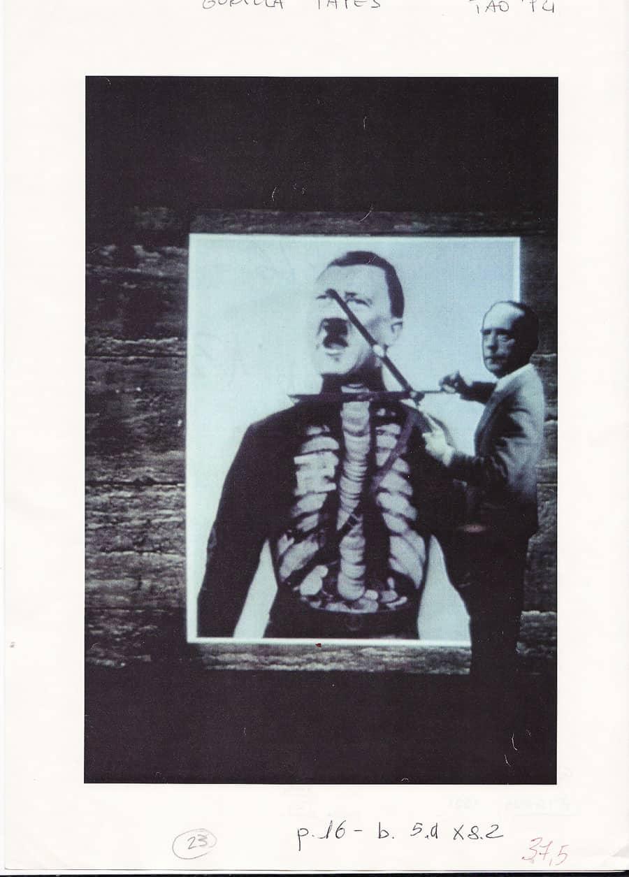 Gorilla Tapes, Zygosis 1991