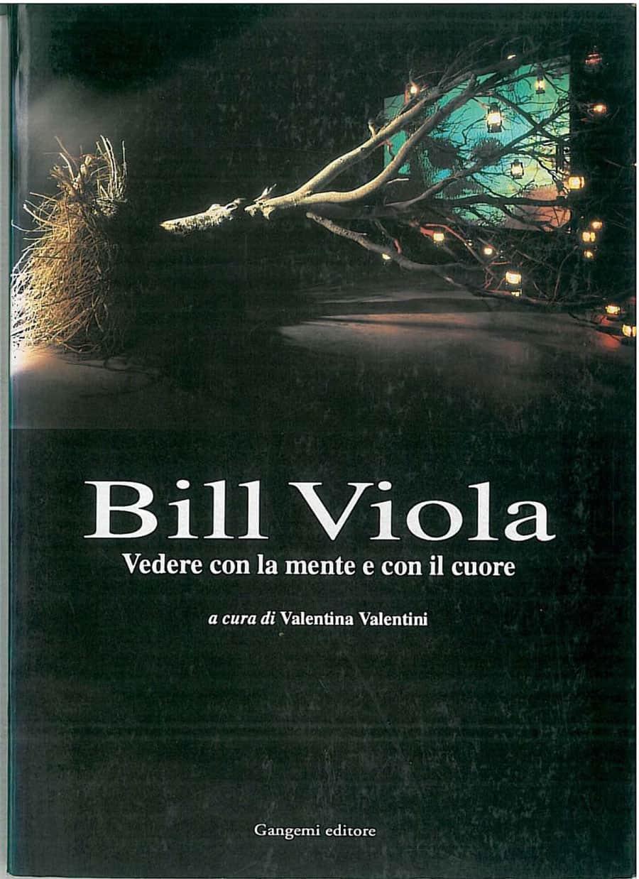 Bill Viola 1993 | Vedere con la mente e con il cuore