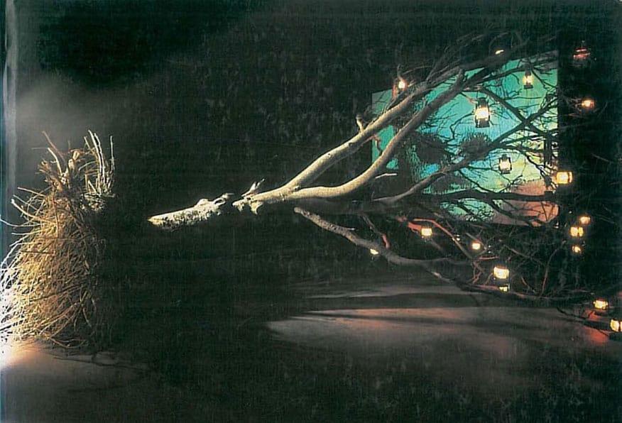 Bill Viola. Progetto. 1990