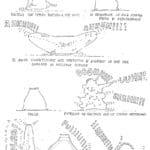 Claudio Remondi e Riccardo Caporossi. Sacco. 1974. Disegno di Riccardo Caporossi, pubblicato in Sabrina Galasso, 'Il teatro di Remondi e Caporossi', Roma, Bulzoni, 1998