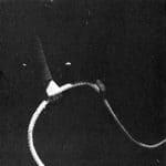 Moby Dick. Mario Ricci.1972. Carlo-pesce con una corda da ormeggio . © foto di Tommaso La Pera