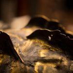 Teatro Gioco Vita, Il Cavaliere inesistente, 2015, corazza/sagoma per proiezione d'ombre, foto Elias Blumenzwerg