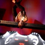 Teatro Gioco Vita, L'Uccello di Fuoco, 2004. Foto di Roberta Cavalieri